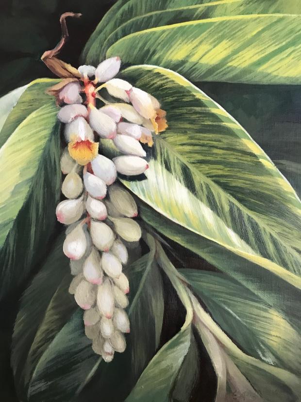 Shell Palm